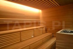 Sauna Modern o gładkich ścianach